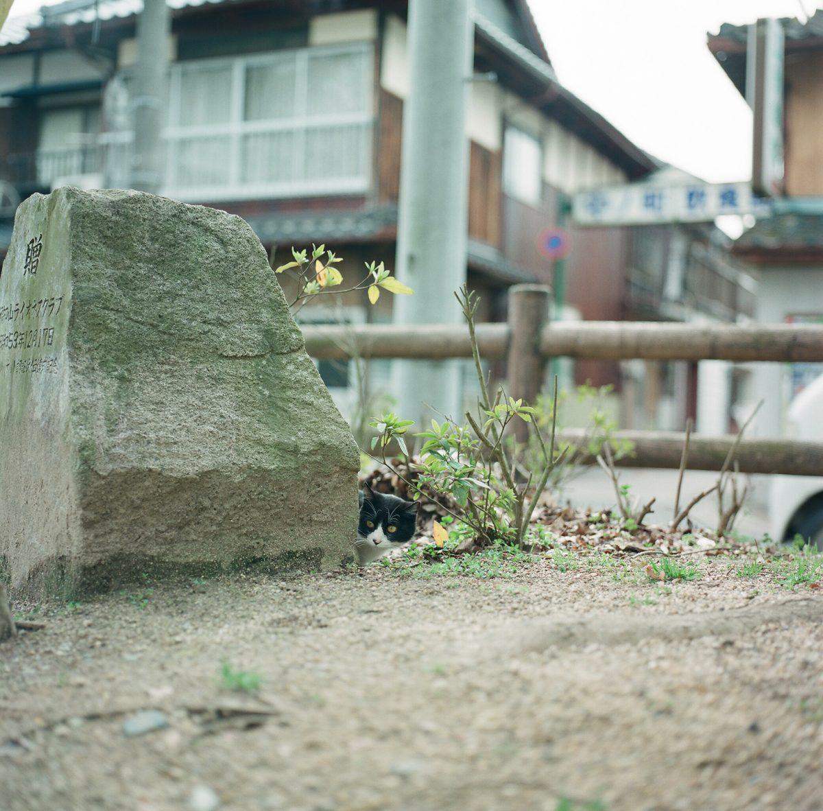 2017年2月27日【御霊神社】福知山市